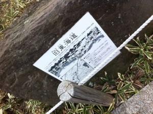 第二回東海道ウォーキング(川崎~戸塚)