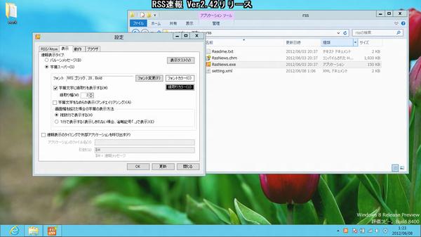 Windows 8 Release Preview上で自作ソフトの疎通動作確認