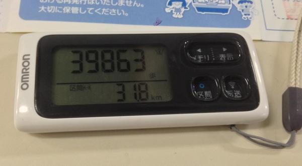 伊豆稲取駅→伊豆急下田駅の区間で39863歩
