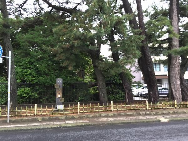 清水町長沢