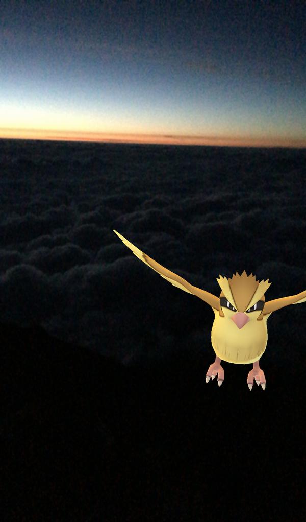 富士山頂でポッポ
