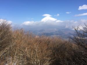 越前岳手前からの富士山